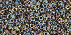 10 g TOHO Seed Beads 11/0 TR-11-0245 - Inside-Color Rainbow Jonquil/Jet Lined (E)