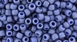 10 g TOHO SeedBeads 8/0 TR-08-2606 F