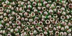 10 g TOHO Seed Beads 11/0 TR-11-0250 - Inside-Color Peridot/Fuchsia-Lined (E)