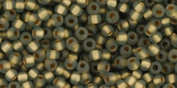 10 g TOHO Seed Beads 11/0 TR-11-0999 M - Gold-Lined Frosted Black Diamond (E)
