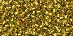 10 g TOHO Seed Beads 11/0 TR-11-0747 - Copper-Lined Lime Green (A,E)