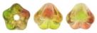 #02.10 50 Stück Glockenblumen 4x6 mm dual Coated-Peach/Pear