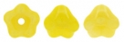 #02.13 50 Stück Glockenblumen 4x6 mm coral lemon