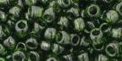 10 g TOHO Seed Beads 6/0  TR-06-0940