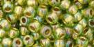 10 g TOHO Seed Beads 6/0  TR-06-0996