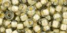 10 g TOHO Seed Beads 6/0  TR-06-0369