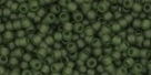10 g TOHO Seed Beads 11/0 TR-11-0940 F - Tr. Frosted Olivine