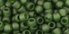 10 g TOHO Seed Beads 6/0  TR-06-0940 F