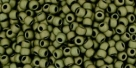 10 g TOHO Seed Beads 11/0 TR-11-0617 - Matte-Color Dark Olive (C)