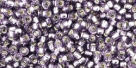 10 g TOHO Seed Beads 11/0 TR-11-0039 - Silver-Lined Lt Tanzanite (A,D)