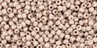 10 g TOHO Seed Beads 11/0 TR-11-YPS0006 - HYBRID Color Trends: Iced Coffee