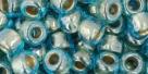 10 g TOHO Seed Beads 3/0  TR-03-0990