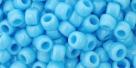10 g TOHO Seed Beads 6/0  TR-06-0043