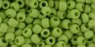 10 g TOHO Seed Beads 6/0  TR-06-0044
