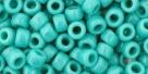 10 g TOHO Seed Beads 6/0  TR-06-0055