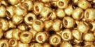10 g TOHO Seed Beads 6/0  TR-06-PF557