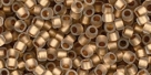 10 g TOHO Takumi Large Hole Seed Bead TTR-11-0989 F - Gold-Lined Frosted Crystal