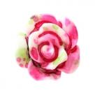 5 Stück Resin Rose Beads ca. 10 mm - Aquarell-Painted - dk rose white green
