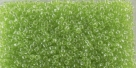 5g TOHO SeedBeads 15/0 TR-15-0105 - Tr. Luster Lime