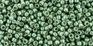 10 g TOHO Seed Beads 11/0 TR-11-PF589 - Permanent Finish - Galvanized Jade Green/Spruce (A,C,D)