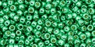 10 g TOHO Seed Beads 11/0 TR-11-PF588 - Permanent Finish - Galvanized Spearmint (A,C,D)