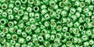 10 g TOHO Seed Beads 11/0 TR-11-PF587 - Permanent Finish - Galvanized Spring Green (A,C,D)
