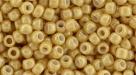 10 g TOHO SeedBeads 8/0 TR-08-0123 D