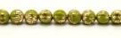 25 Stück Perlen Melone - Ø 6mm Opaque Olivine Gold Wash