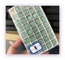 1 Glas-Square Ø 12x12 mm - opal jade