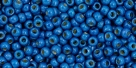 10 g TOHO Seed Beads 11/0 TR-11-PF585 F - Permanent Finish - Matte Galvanized Royal Blue (Ocean Blue) (A,C,D)