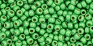 10 g TOHO Seed Beads 11/0 TR-11-PF587 F - Permanent Finish - Matte Galvanized Spring Green (A,C,D)