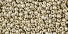 10 g TOHO Seed Beads 11/0 TR-11-PF558 - Permanent Finish - Galvanized Aluminum (A,D,C)