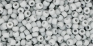 10 g TOHO Seed Beads 11/0 TR-11-0053 F - Opaque-Frosted Grey
