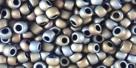 10 g TOHO SeedBeads 8/0 TR-08-0613