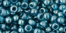 10 g TOHO Seed Beads 6/0  TR-06-0108 BD
