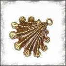 1 Muschel 19 mm - bronze