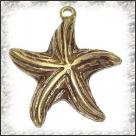 1 Seestern 36 mm - bronze