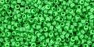 5g TOHO SeedBeads 15/0 TR-15-0047 - Opaque Mint Green