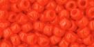 10 g TOHO Seed Beads 6/0  TR-06-0050
