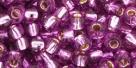 10 g TOHO Seed Beads 6/0  TR-06-2219