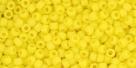 10 g TOHO Seed Beads 11/0 TR-11-0042 F