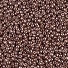 5 g Miyuki Seed Beads 11/0 - DURACOAT - 11-4213