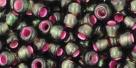 10 g TOHO Seed Beads 6/0  TR-06-2204