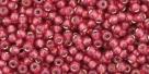 10 g TOHO Seed Beads 11/0 TR-11-2113