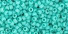 5g TOHO SeedBeads 15/0 TR-15-0055 F