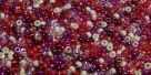 5 Gramm Miyuki Seed Beads 15-Mix 21 Strawberry Fields
