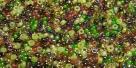 5 Gramm Miyuki Seed Beads 15-Mix 22 Earthtone
