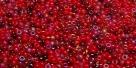 5 Gramm Miyuki Seed Beads 15-Mix 30 Red Medley