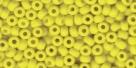 10 Gramm Miyuki Seed Beads 06-0404