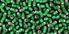 10 g TOHO Seed Beads 11/0 TR-11-0036 F - Silver-Lined Frosted Emerald (A,D)